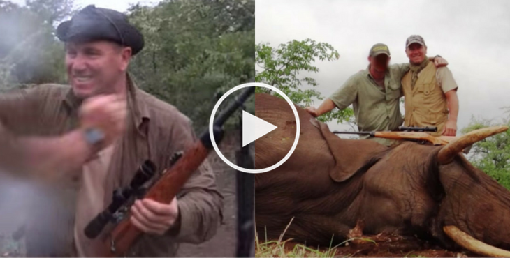 Pascal Olmeta tue un éléphant