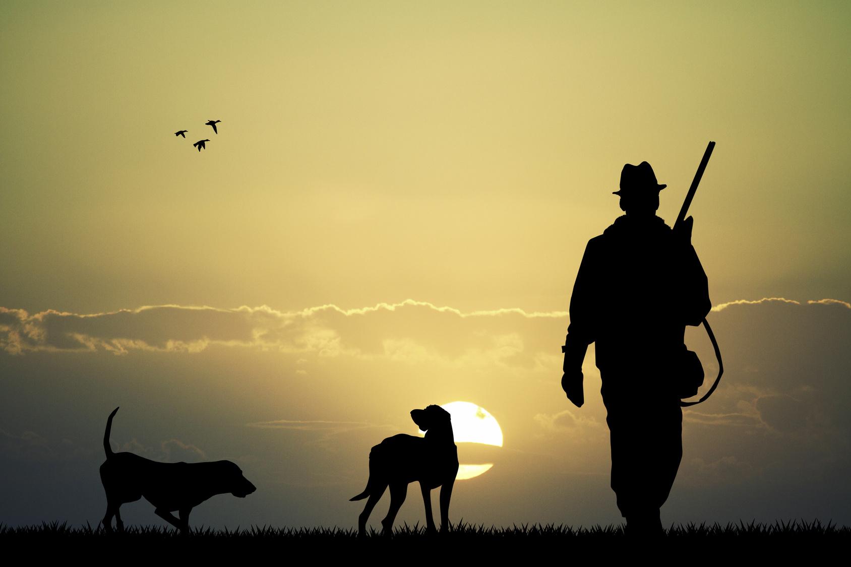 fermeture chasse