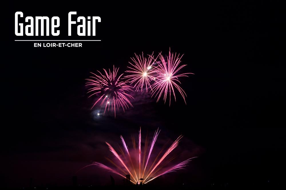 Photo4 La nouvelle édition du Game Fair est lancée !